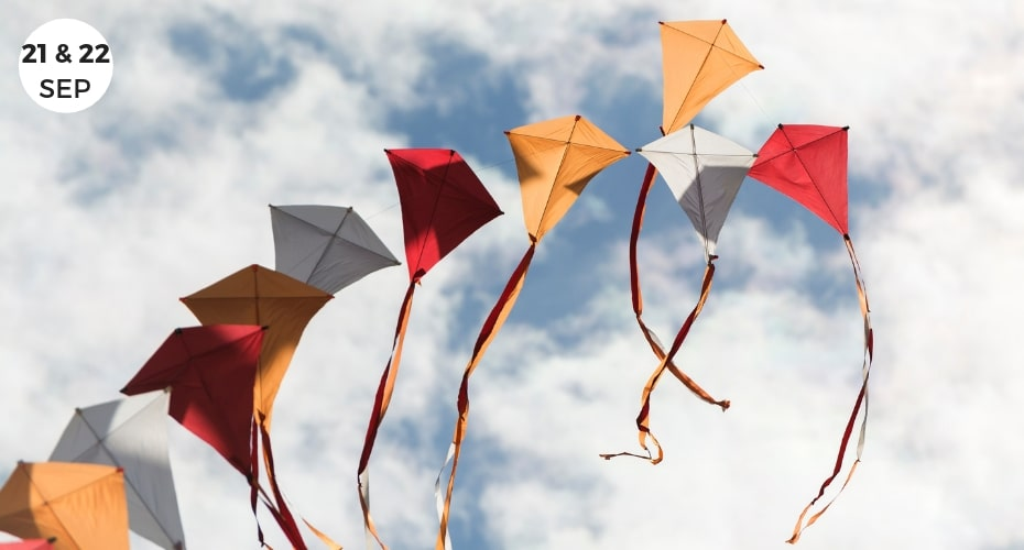 Local events, Coupeville, Whidbey Island, Washington, Things to do on Whidbey, Kites, Festivals, get outside, enjoy the colors